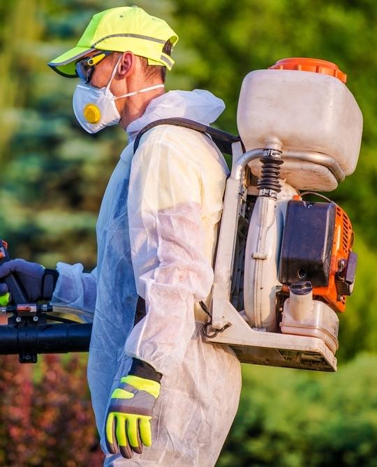 garden-pest-control-services